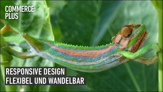 MEET MAGENTO 2013-06-04 00001110 SlideRESPONSIVE DESIGN RESPONSIVE DESIGN FLEXIBEL UND WANDELBAR