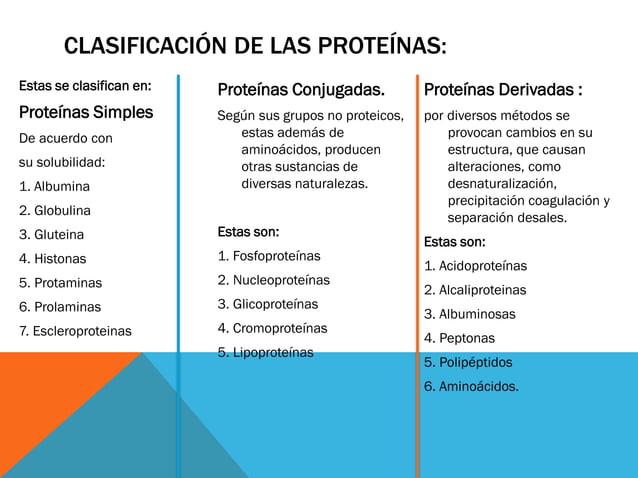 CLASIFICACIÓN DE LAS PROTEÍNAS: Estas se clasifican en: Proteínas Simples De acuerdo con su solubilidad: 1. Albumina 2. Gl...