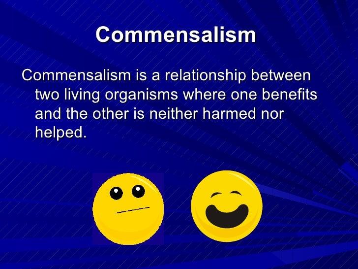 Predation Mutualism Commensalism Or Parasitism
