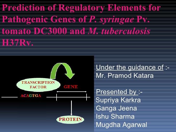 Under the guidance of  :- Mr. Pramod Katara   Presented by  :-   Supriya Karkra Ganga Jeena Ishu Sharma Mugdha Agarwal Pre...