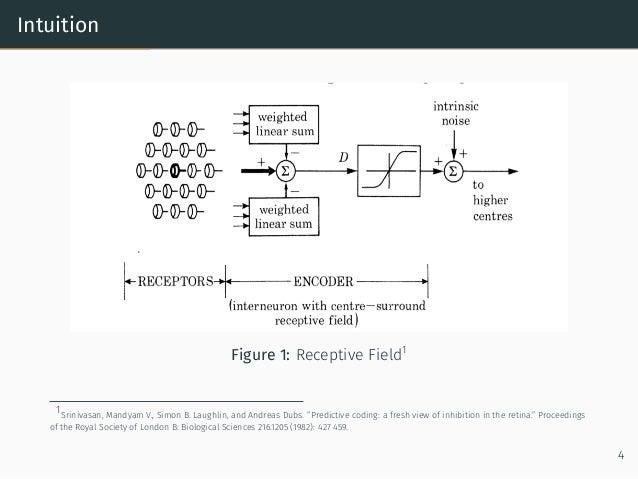 "Intuition Figure 1: Receptive Field1 1Srinivasan, Mandyam V., Simon B. Laughlin, and Andreas Dubs. ""Predictive coding: a f..."