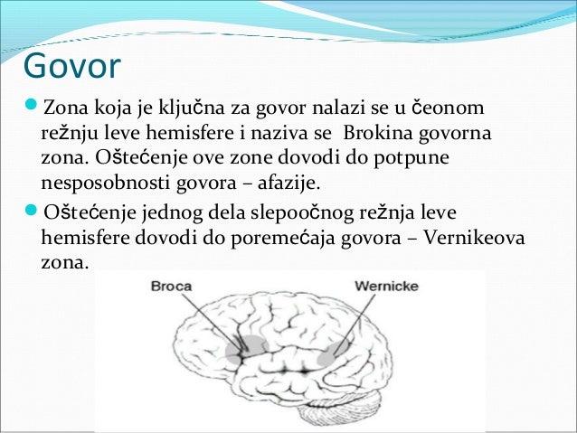 Elektroencefalografija(EEG) Ovo je postupak merenja bioelektricne aktivnosti  kore prednjeg mozga uz pomoc elektroda pris...
