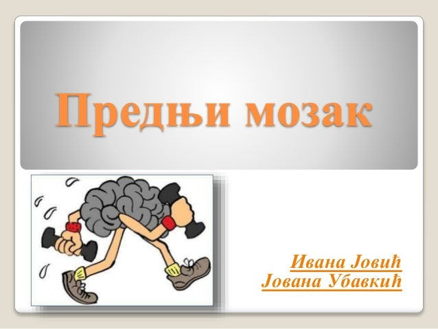 Предњи мозак Ивана Јовић Јована Убавкић