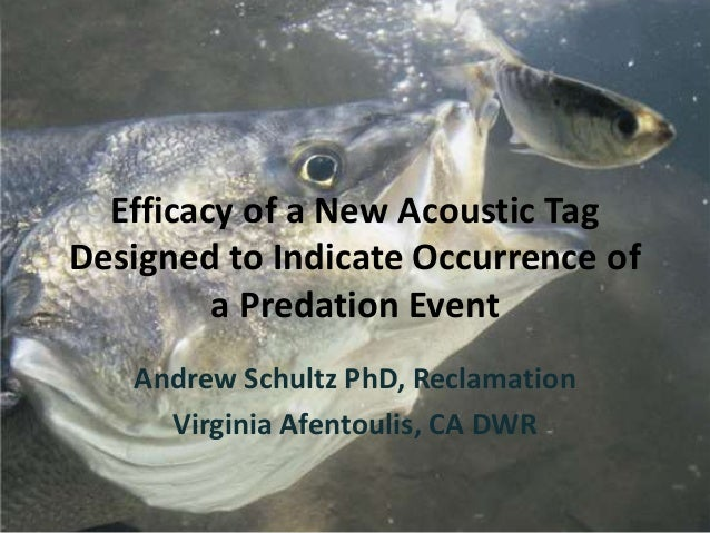 Efficacy of a New Acoustic Tag Designed to Indicate Occurrence of a Predation Event Andrew Schultz PhD, Reclamation Virgin...