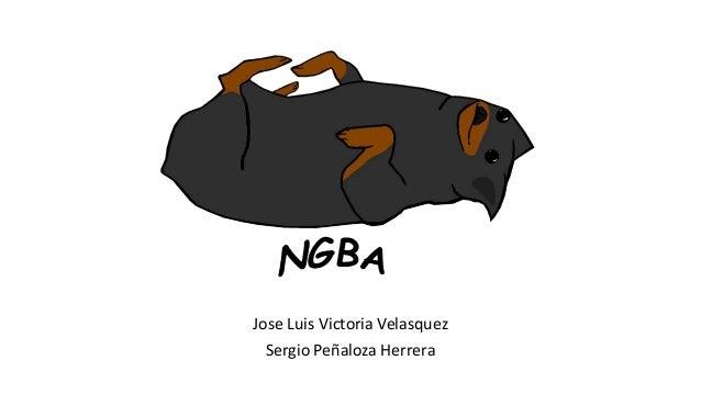 Jose Luis Victoria Velasquez Sergio Peñaloza Herrera