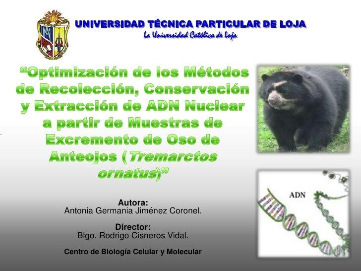 """UNIVERSIDAD TÉCNICA PARTICULAR DE LOJA<br />La Universidad Católica de Loja<br />""""Optimización de los Métodos de Recolecci..."""