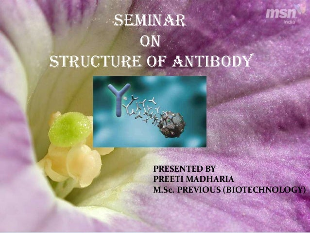 SEMINARONSTRUCTURE OF ANTIBODYPRESENTED BYPREETI MADHARIAM.Sc. PREVIOUS (BIOTECHNOLOGY)