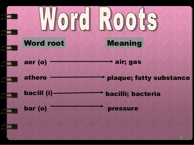 medical terms- Prefix and suffixes