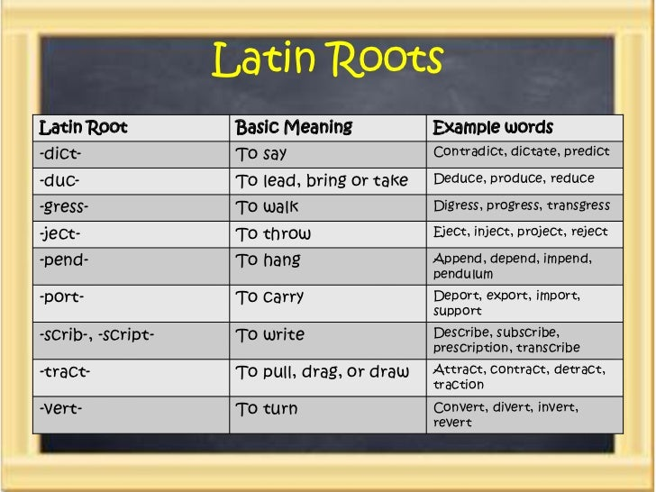 Prefixes Suffixes & Root Word - Apps on Google Play