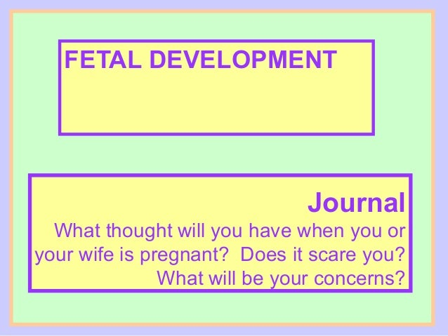 FETAL DEVELOPMENT                              Journal  What thought will you have when you oryour wife is pregnant? Does ...