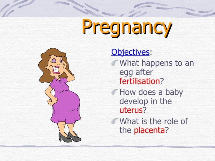 Pregnancy <ul><li>Objectives : </li></ul><ul><li>What happens to an egg after  fertilisation ? </li></ul><ul><li>How does ...