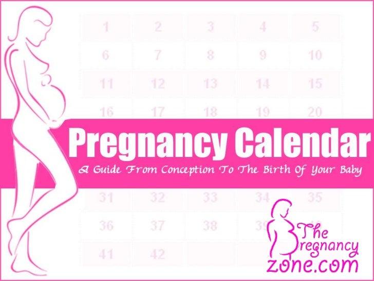pregnancy calenar