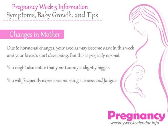Pregnancy week 5 information – symptoms, baby growth, and tips