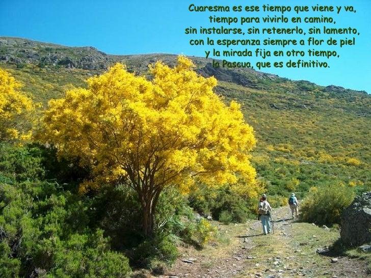 Cuaresma es ese tiempo que viene y va, tiempo para vivirlo en camino, sin instalarse, sin retenerlo, sin lamento, con la e...