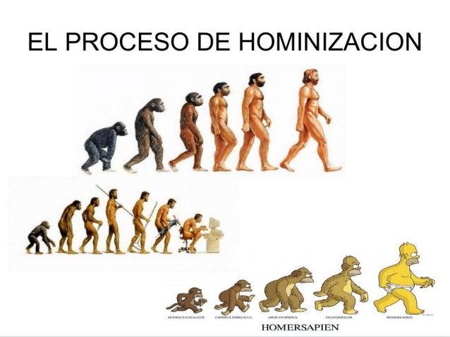  Organización social:  División social del trabajo (agricultores, ganaderos …)  Creencias:  Sus dioses son las fuerzas...