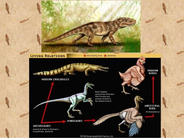 the history of earths mass extinctions essay Teach the earth paleontology teaching activities mass extinctions and the fossil record mass extinctions and the fossil record (permo is short for permian) mass extinction with the cretaceous-tertiary david mcconnell publishes article on integrate in earth magazine.