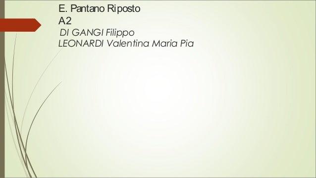 E. Pantano Riposto A2 DI GANGI Filippo LEONARDI Valentina Maria Pia