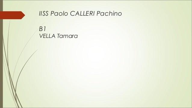IISS Paolo CALLERI Pachino B1 VELLA Tamara