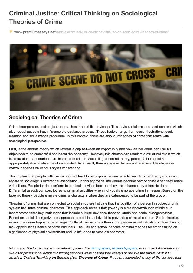 Example Of Criminal Justice Critical Thinking | WOW Essays