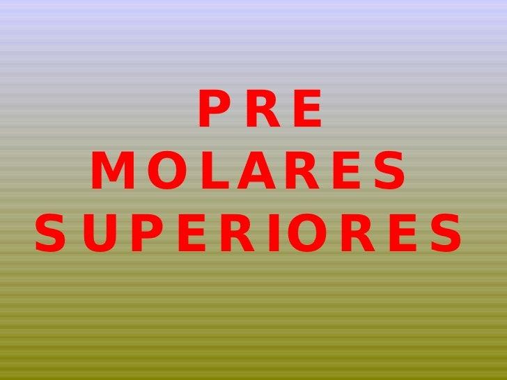 PRE MOLARES SUPERIORES
