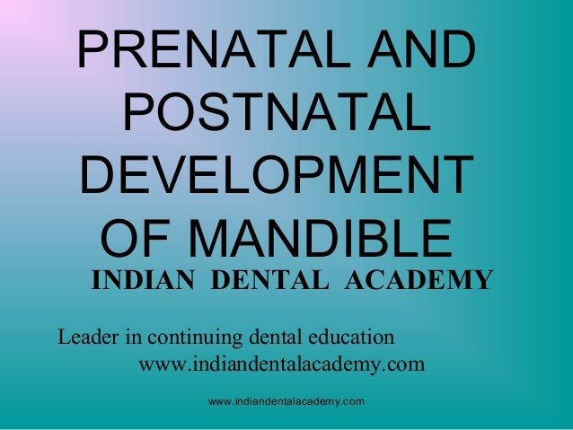 PRENATAL AND POSTNATAL DEVELOPMENT OF MANDIBLE  INDIAN DENTAL ACADEMY  Leader in continuing dental education www.indianden...