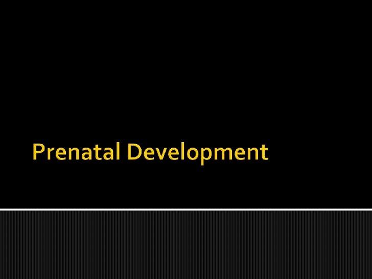 Prenatal Development<br />