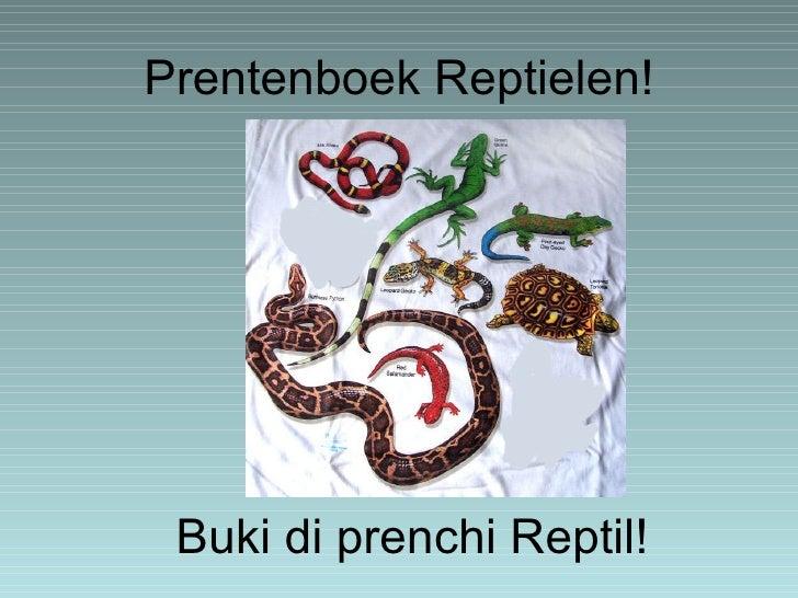 Prentenboek Reptielen! Buki di prenchi Reptil!