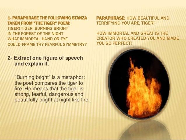 Prep 1 Tiger Poem
