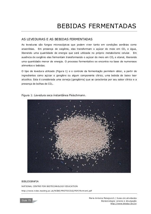 Maria Antonia Malajovich / Guias de atividades Biotecnologia: ensino e divulgação http://www.bteduc.bio.br Guia 75 BEBIDAS...