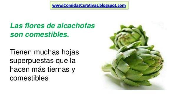 Alcachofa para adelgazar preparacion de pavo