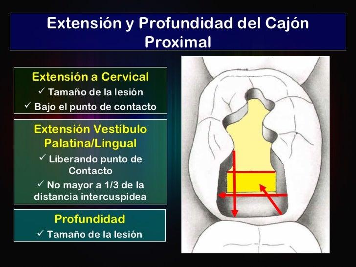 Extensión y Profundidad del Cajón Proximal <ul><li>Extensión a Cervical </li></ul><ul><li>Tamaño de la lesión </li></ul><u...