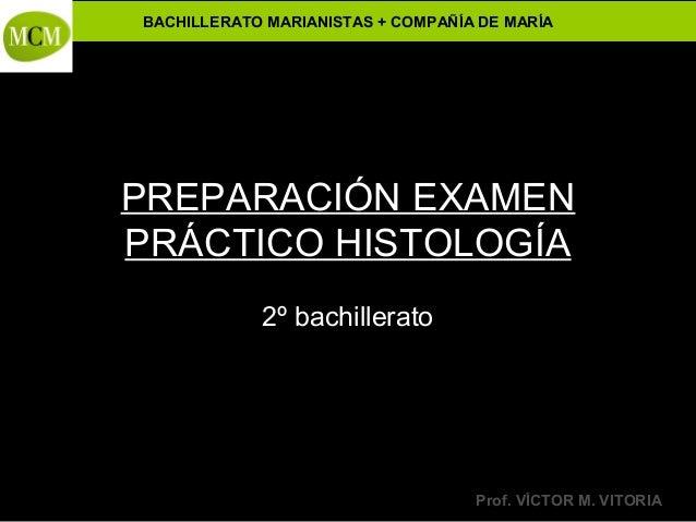 Preparación examen práctico histología