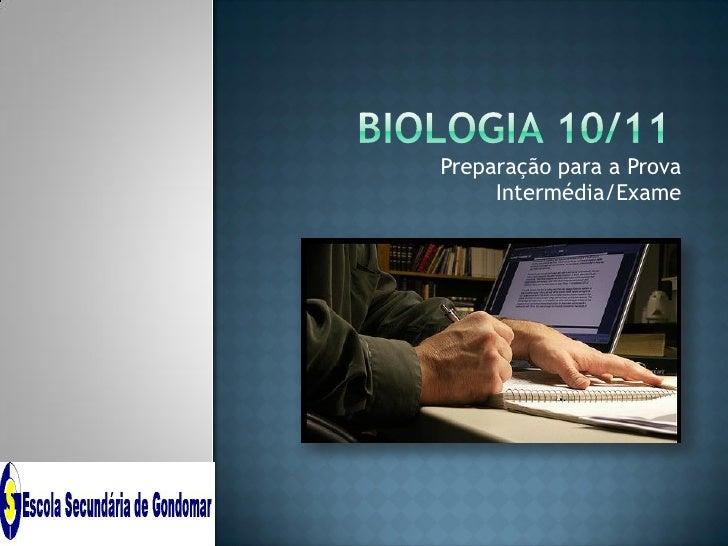 Preparação para a Prova     Intermédia/Exame