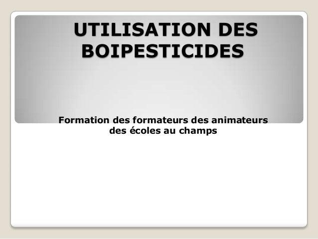 UTILISATION DES   BOIPESTICIDESFormation des formateurs des animateurs         des écoles au champs