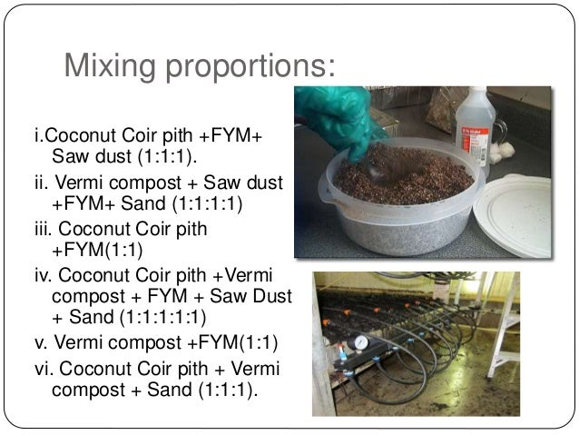 Preparation of casing mixture, its types and application