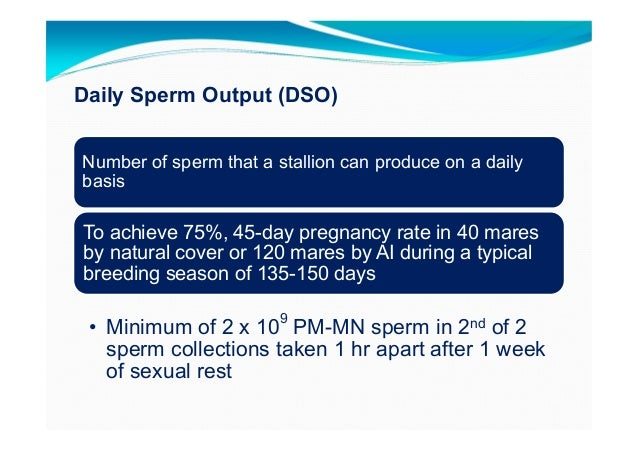 Equine sperm breeding dose calculations