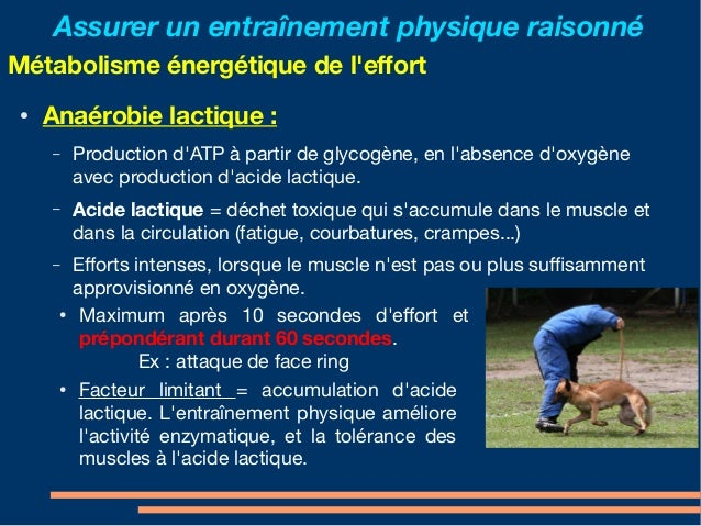 Muscle fatigue adenosine tri phosphate and altitude