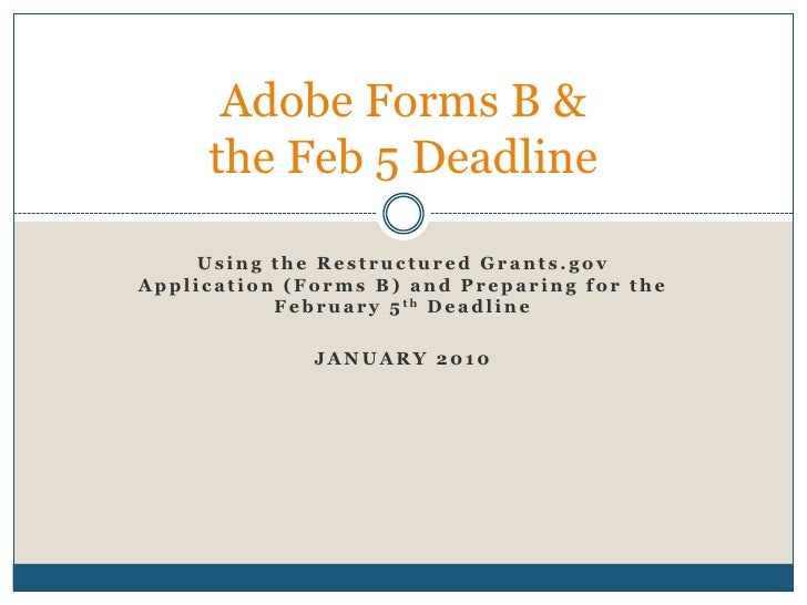 Using the Restructured Grants.gov Application (Forms B) and Preparing for the February 5th Deadline<br />January 2010<br /...