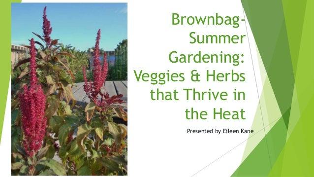 Brownbag-        Summer     Gardening:Veggies & Herbs  that Thrive in       the Heat       Presented by Eileen Kane