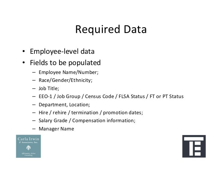 Preparing Your Data For An Affirmative Action Plan Workforce Snapshot