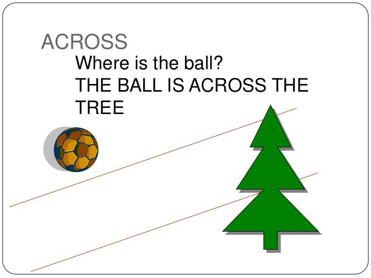 THE BALL IS ACROSS TREE