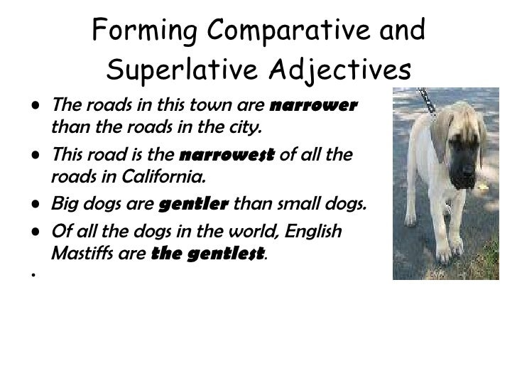 Forming Comparative and Superlative Adjectives <ul><li>The roads in this town are  narrower  than the roads in the city.  ...