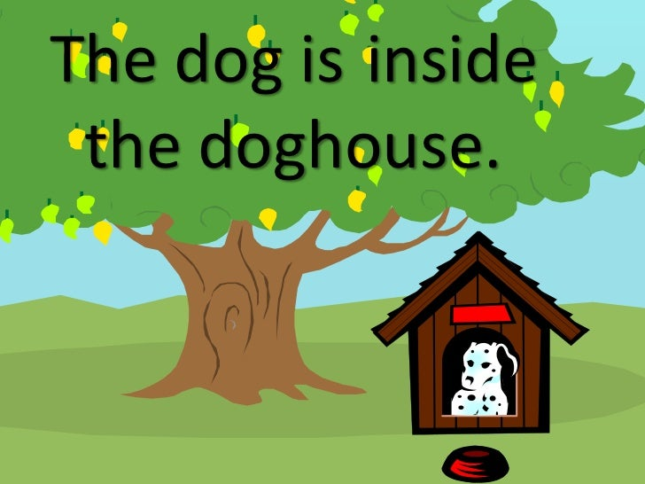 The Dog Is Inside Doghouse