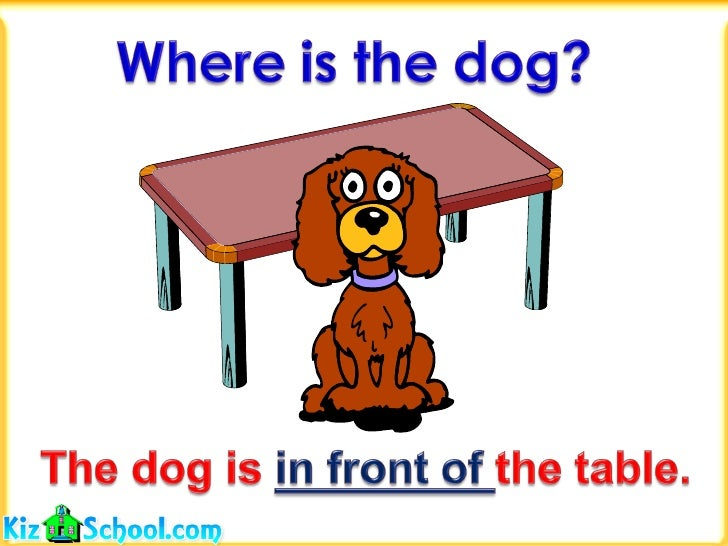 Cat And Dog At Table Eating