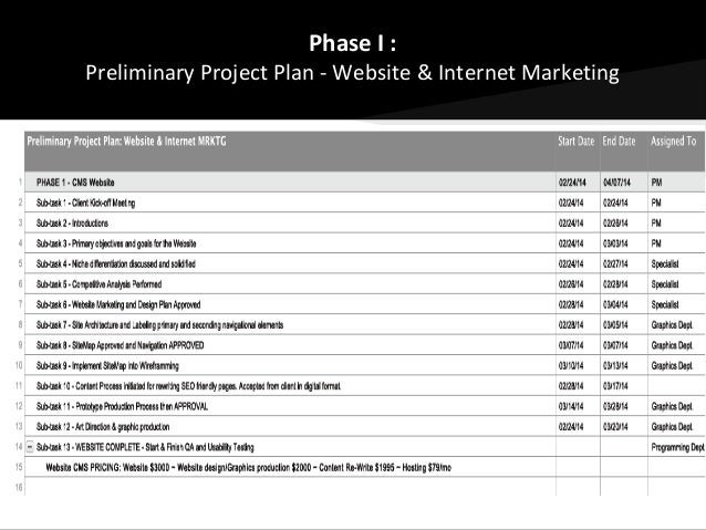 website project plan examples