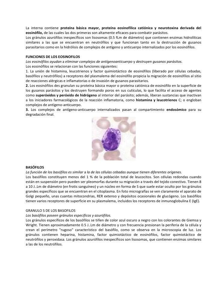 La interna contiene proteína básica mayor, proteína eosinofílica catiónica y neurotoxina derivada deleosinófilo, de las cu...