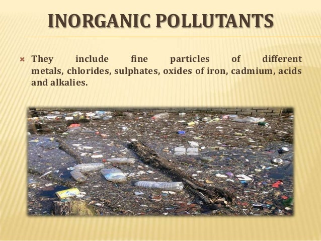 essay on environmental pollutants Unlike most editing & proofreading services, we edit for everything: grammar, spelling, punctuation, idea flow, sentence structure, & more get started now.