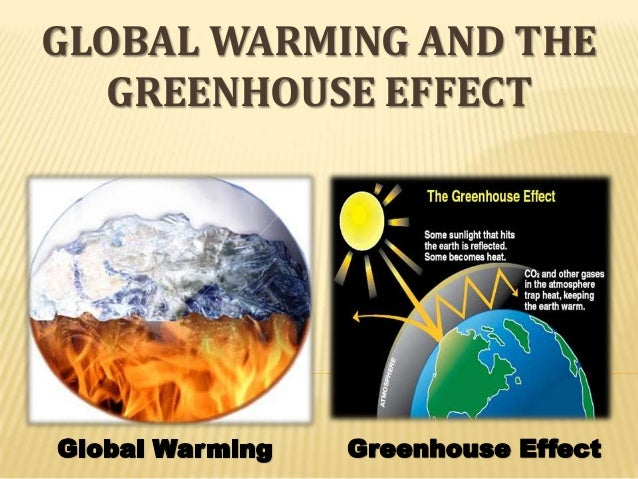 global warming environmental effects essay Essay on a global warming writing global warming is one of the environmental challenges affecting how to write a body paragraph for an essay on global warming.