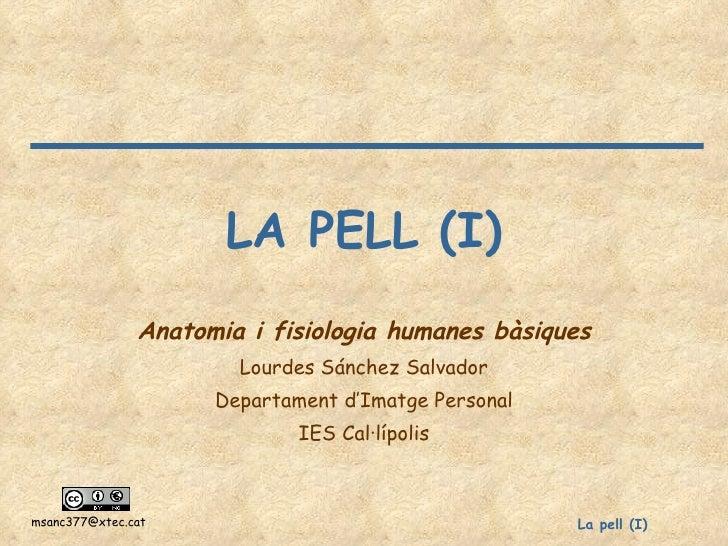 LA PELL (I) Anatomia i fisiologia humanes bàsiques Lourdes Sánchez Salvador Departament d'Imatge Personal IES Cal·lípolis