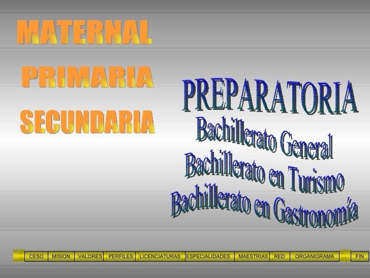 PRIMARIA PREPARATORIA CESO MISION VALORES PERFILES ESPECIALIDADES MAESTRIAS RED ORGANIGRAMA LICENCIATURAS FIN MATERNAL SEC...